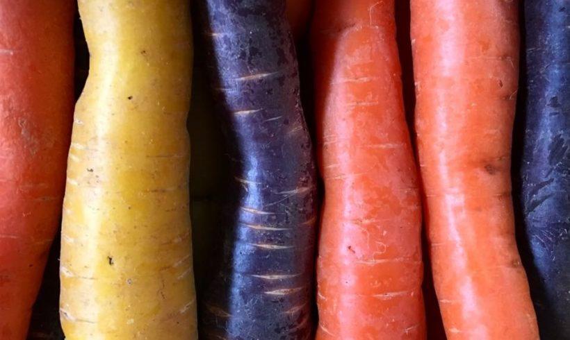 Stressen wir unsere Kinder durch falsche Ernährung?