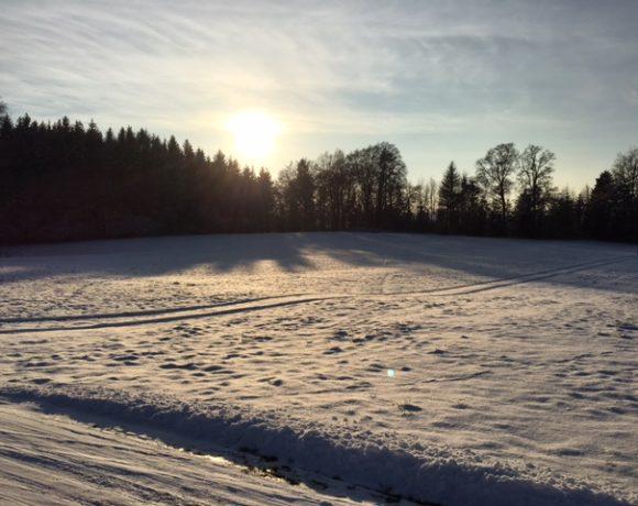 Winterzeit – Vitamin D-Mangelzeit!