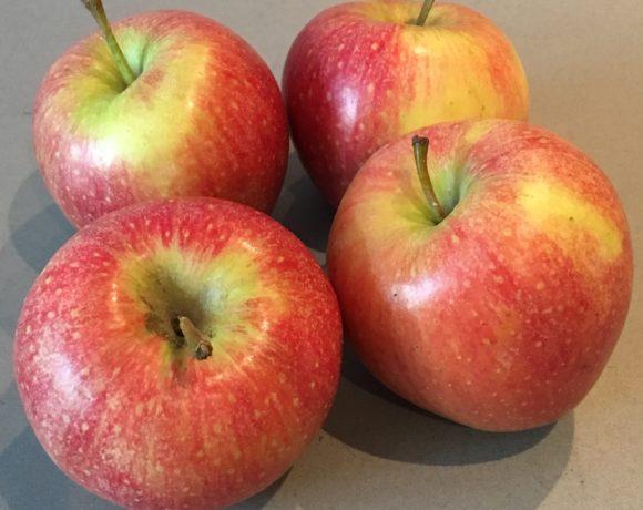 Unverträglichkeiten bei Nahrungsmitteln. Was kann ich dagegen tun? – Neuer Vortrag am 18.10.17